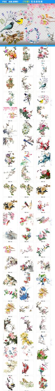 工笔花鸟装饰画png素材