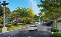 市政道路绿化效果图 PSD
