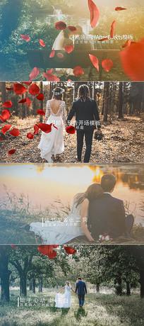 浪漫花瓣婚礼预告开场AE模板