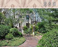 别墅入口园路植物意向图 JPG