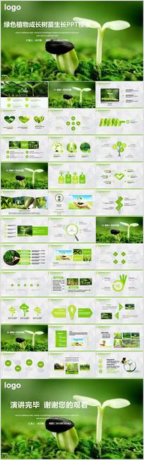 植物生长发芽生物课件PPT