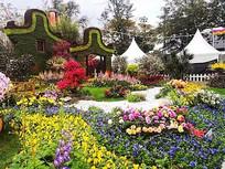 公园花展景观 JPG