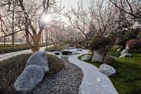 流线景观小庭院