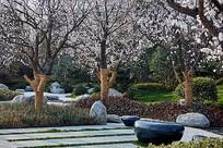 日式小庭院景观