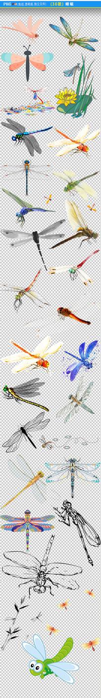 小蜻蜓png素材