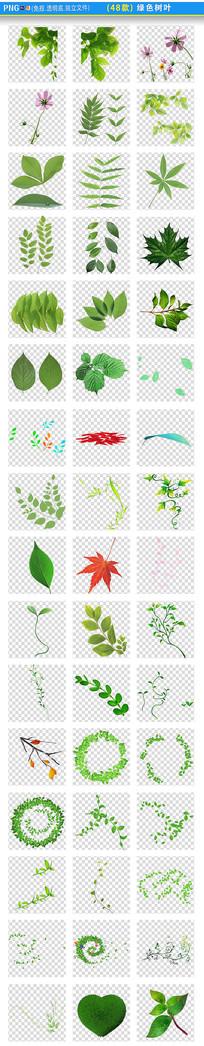 绿色树叶PNG素材