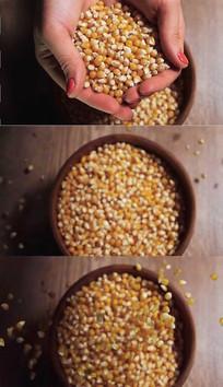 手捧玉米粒实拍视频素材 mov