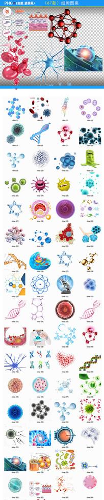 人体基因细胞png素材