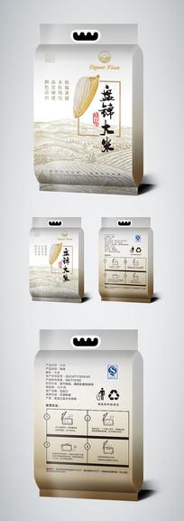 简约时尚大米包装袋设计模板 AI