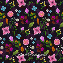 不同物种的花卉背景