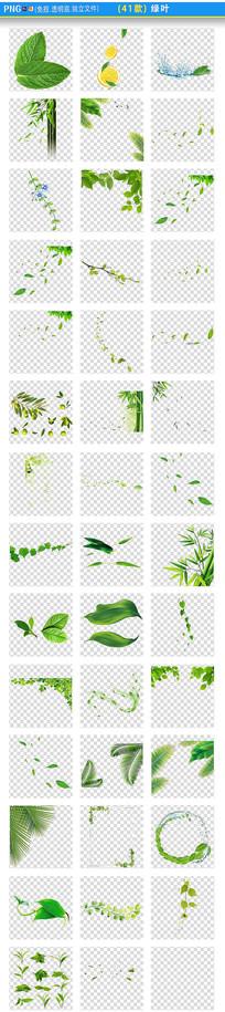 嫩绿叶png素材