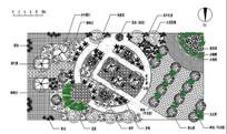广场设计cad平面意向图 JPG