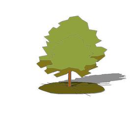 2D绿色乔木