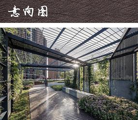 垂直绿化景观廊架