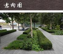 公园休闲绿地 JPG
