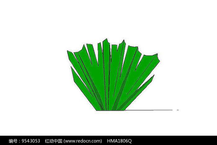 绿灌木图片