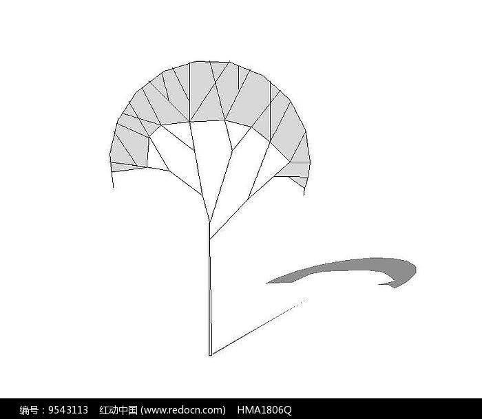 扇形树无色