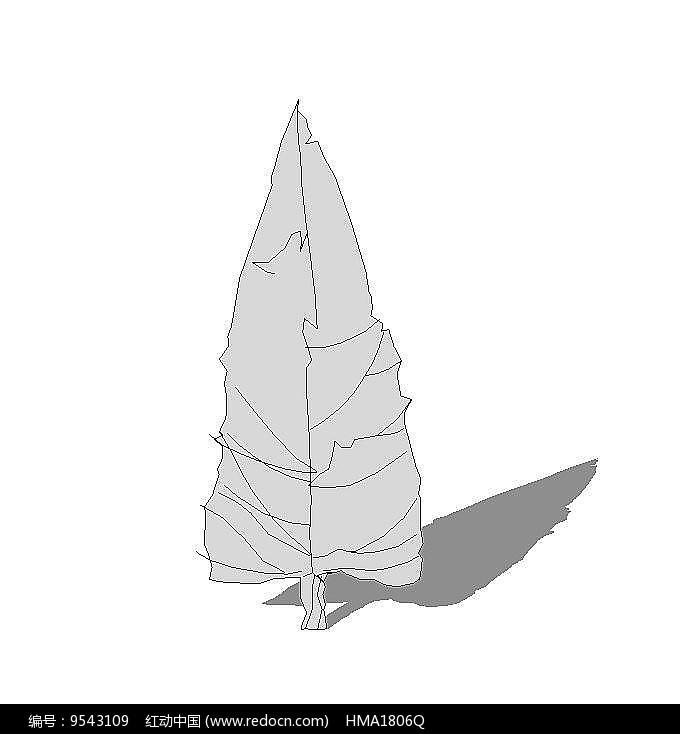 松树无色su图片