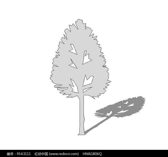 su植物无色图片