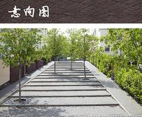 台阶树池景观