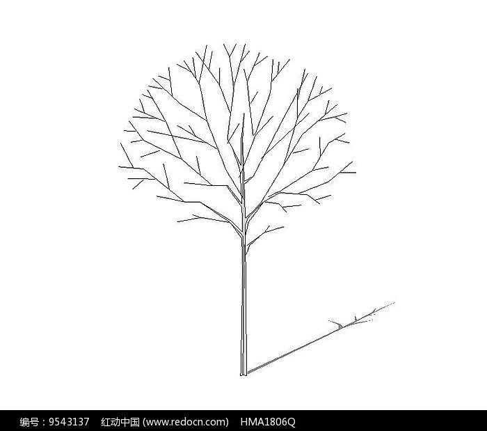 无色枯树图片