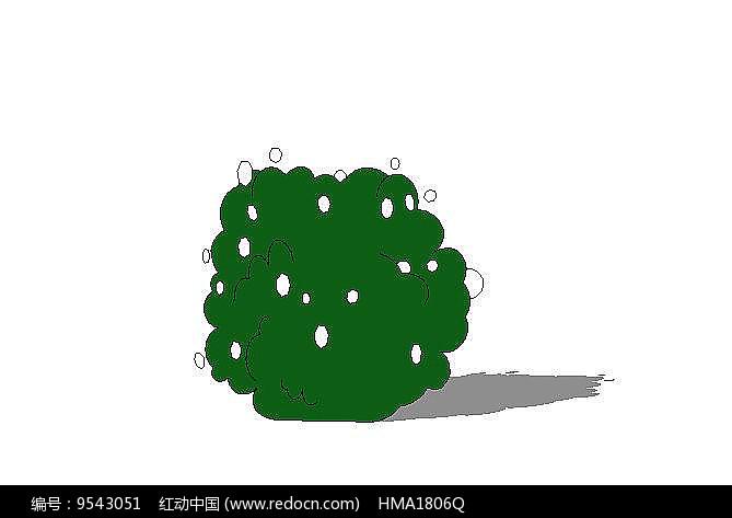 小花灌木图片