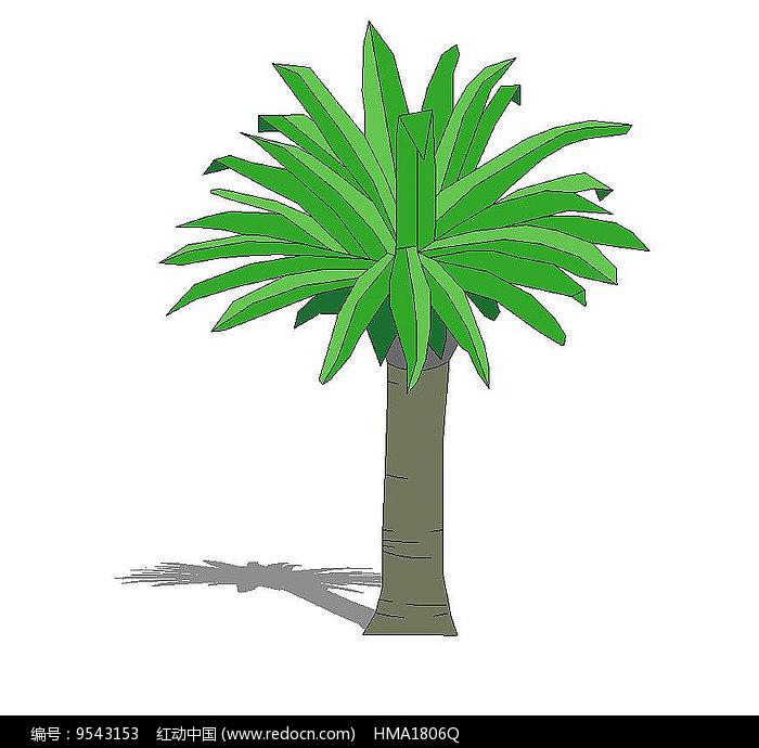 棕榈树su图片