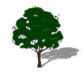 深绿色乔木