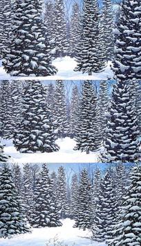4K冬季雪花雪松背景视频素材