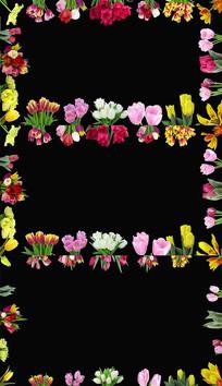 四周边框绽放鲜花实拍视频素材
