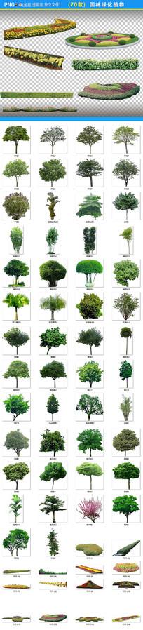 园林绿化植物png素材