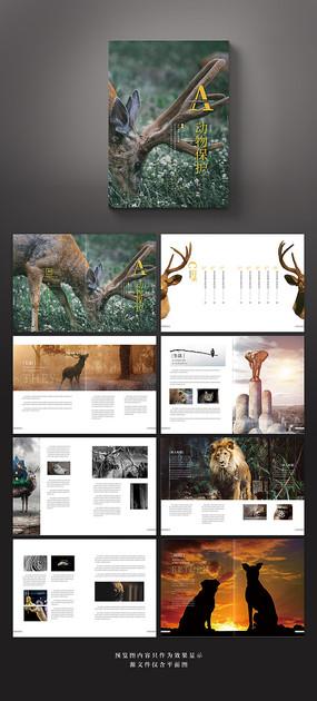 极简创意保护动物公益宣传画册
