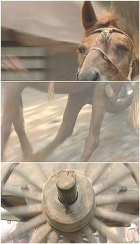 一匹马失前蹄差点摔倒实拍视频