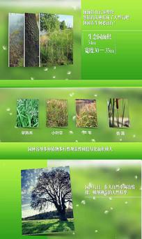生态自然研究绿色介绍AE模版