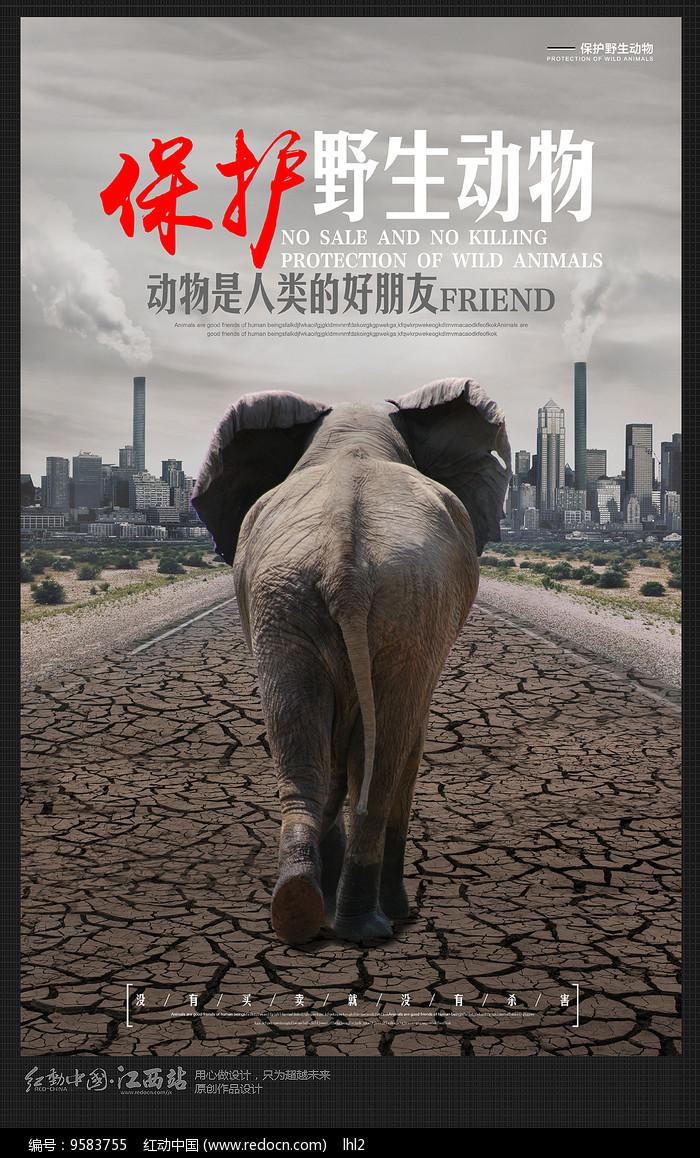 保护野生动物宣传公益海报