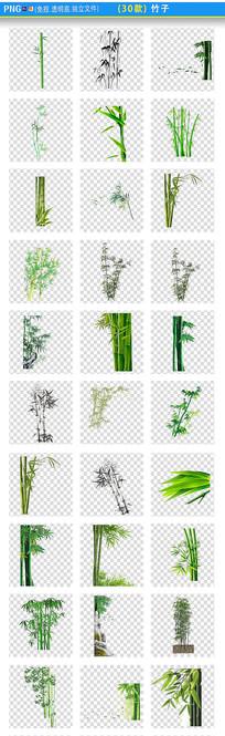 竹子图片PNG素材