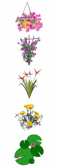 花卉植物SU模型精选21组