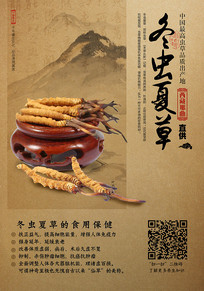 高档虫草宣传海报