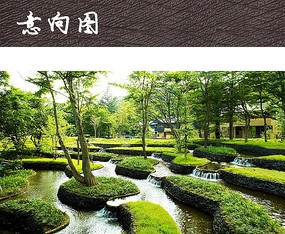 酒店树池水景