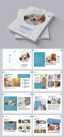 宠物店宠物画册 PSD