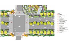 城市道路绿化植物平面图