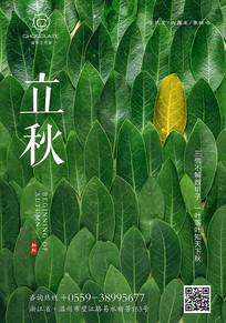 创意立秋时节宣传海报