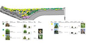 公园乔木平面配置图