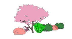 花卉植物群su