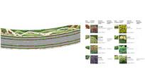 植物种类分析图