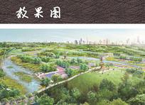 湿地公园鸟瞰图 JPG