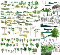 园林树木素材