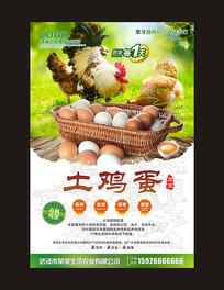 土鸡蛋宣传海报