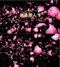 浪漫七夕情人节视频