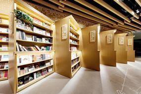 创意书店倾斜书架意向